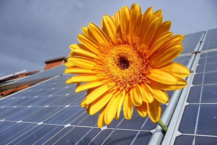 Efektívna a ekologická energia od Viessmann